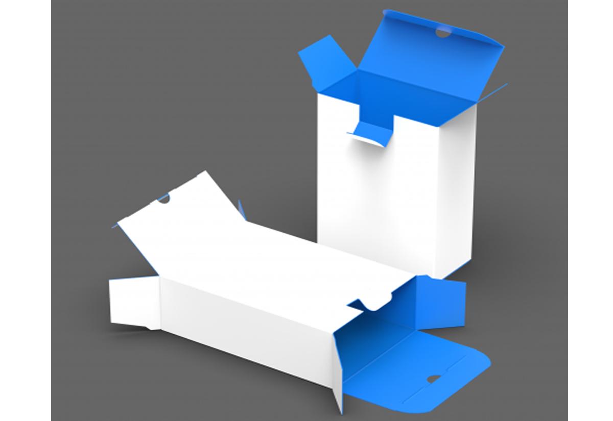 Reverse Tuck End Box